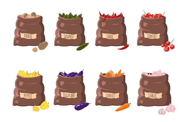 Conjunto aislado de bolsas en diferentes verduras y nombres. una bolsa de patatas, una bolsa de tomates.