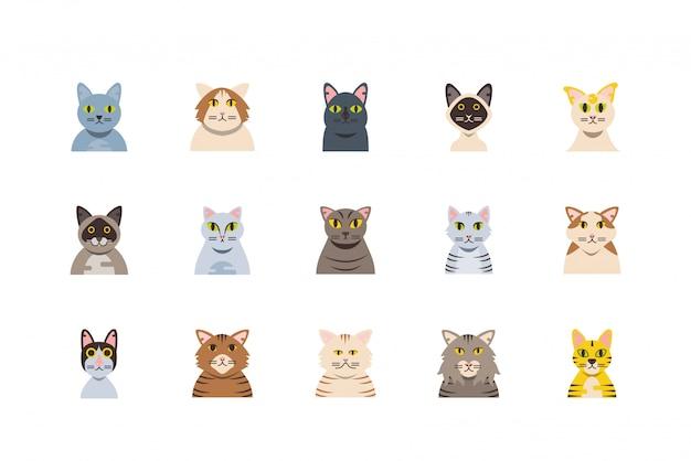 Conjunto aislado de diseño de dibujos animados de gatos lindos