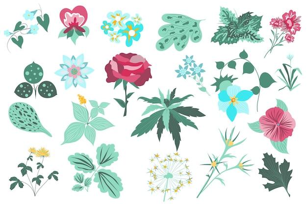 Conjunto aislado de flores y plantas rosa hojas verdes flores silvestres en flor jardín de plantas con flores