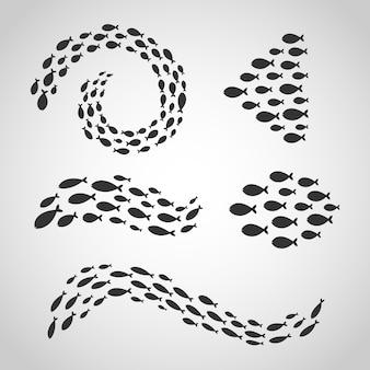 Conjunto aislado de grupos de peces nadando