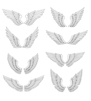 Conjunto de alas heráldicas
