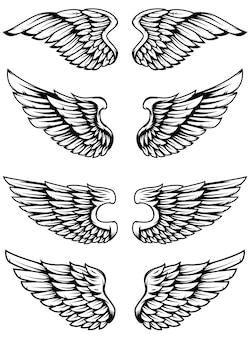 Conjunto de las alas sobre fondo blanco. elementos para logotipo, etiqueta, emblema, signo, insignia. ilustración
