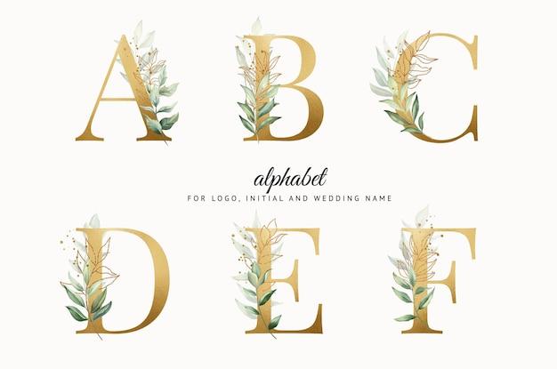 Conjunto de alfabeto de acuarela dorada de abcdef con hojas doradas para marcas de tarjetas de logotipo, etc.