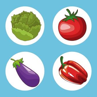 Conjunto de alimentos ronda diseño de ilustración vectorial icono gráfico