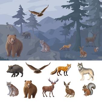 Conjunto de animales de bosque colorido de dibujos animados