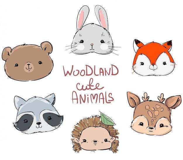 Conjunto de animales de bosque, dibujado a mano lindo conejo, zorro, oso, mapache, erizo y ciervo.