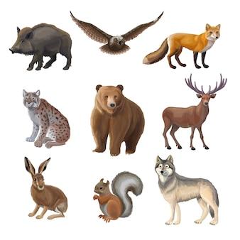 Conjunto de animales del bosque de dibujos animados