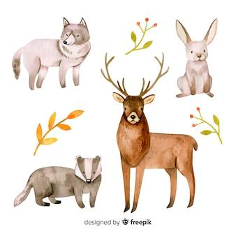 Conjunto de animales de bosque estilo acuarela.
