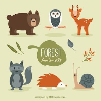 Conjunto de animales del bosque con vegetación