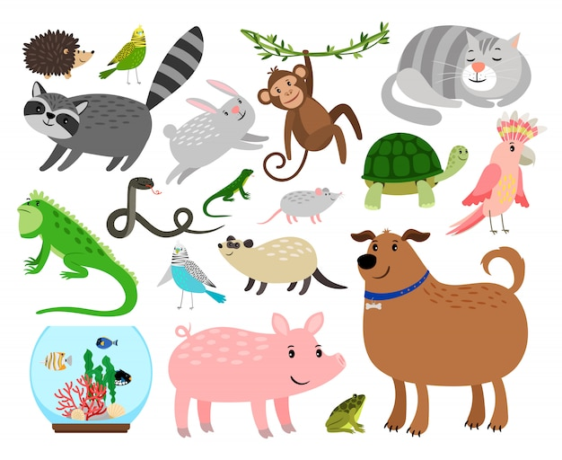Conjunto de animales de compañía de dibujos animados