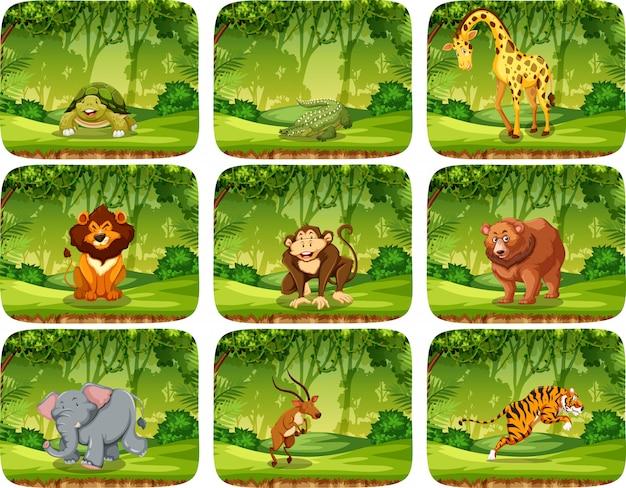 Conjunto de animales en escena de la naturaleza.