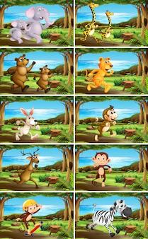Conjunto de animales en escenas de la naturaleza.