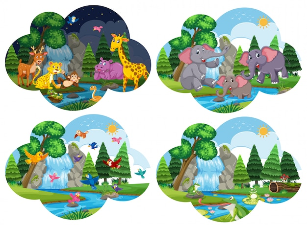Conjunto de animales en escenas