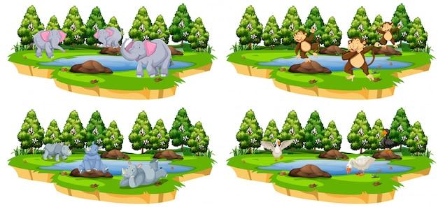Conjunto de animales en el estanque.