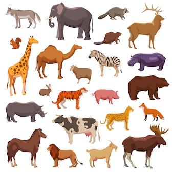 Conjunto de animales grandes