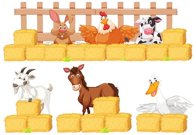 Conjunto de animales de granja y heno sobre fondo blanco.