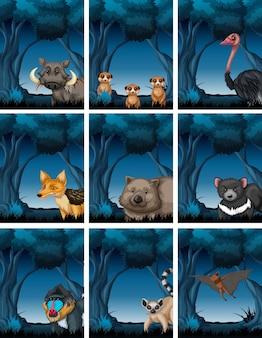 Conjunto de animales en la naturaleza.