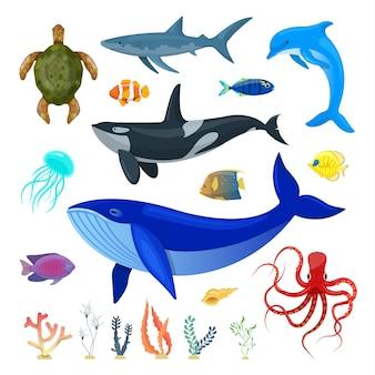 Conjunto de animales oceánicos