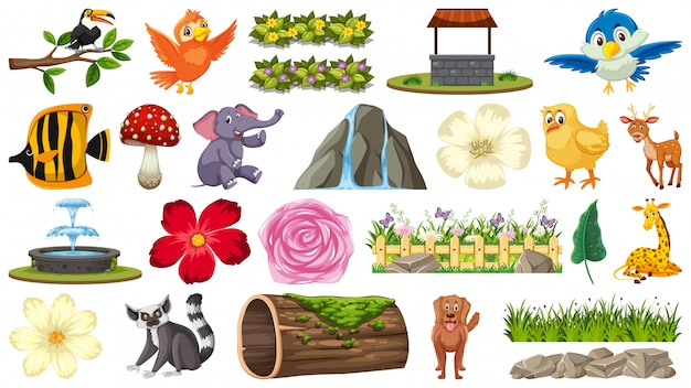 Conjunto de animales y plantas.