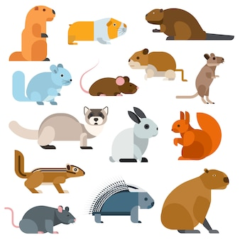 Conjunto de animales roedores dibujos animados.