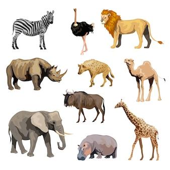 Conjunto de animales salvajes africanos