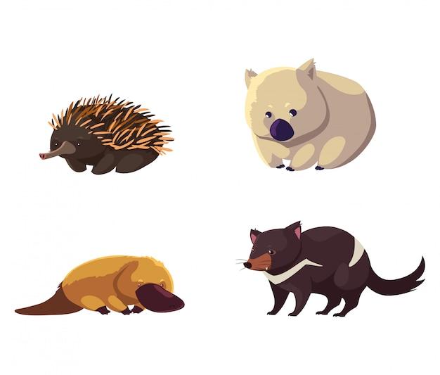 Conjunto de animales salvajes de australia sobre fondo blanco.