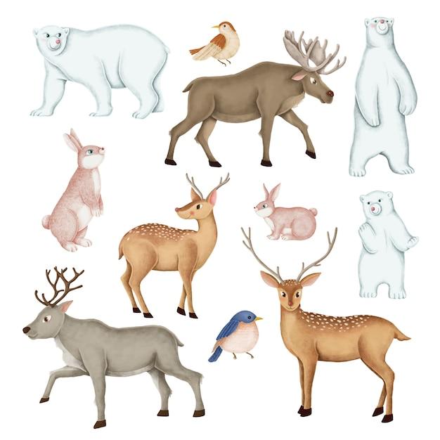 Conjunto de animales salvajes dibujados a mano.
