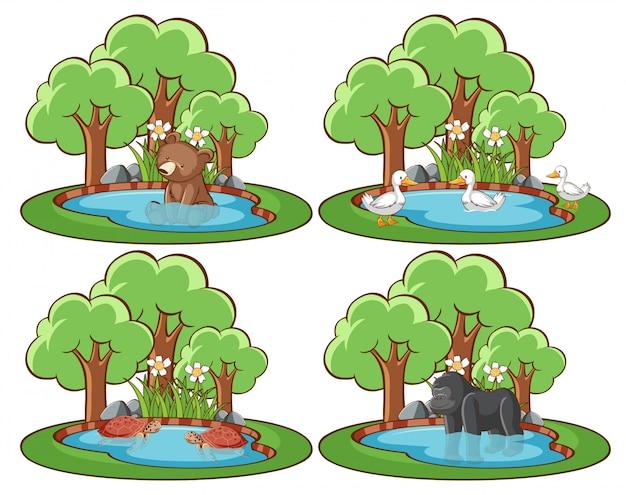 Conjunto de animales salvajes en el parque con estanque y árbol