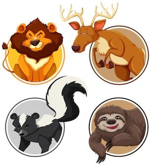 Conjunto de animales salvajes en plantilla círculo