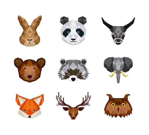 Conjunto de animales sobre fondo blanco, ilustración vectorial