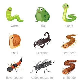 Conjunto de animales en temporada de lluvias