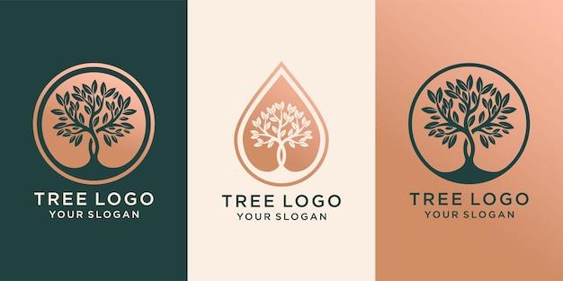Conjunto de árbol de logotipo y gotas o agua combinada con árbol. diseño de logotipo vector premium