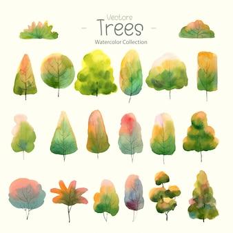 Conjunto de árboles acuarelas para bosque de diseño