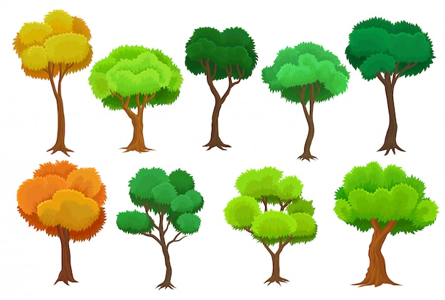 Conjunto de árboles estacionales, árboles de verano y otoño ilustraciones sobre un fondo blanco.