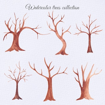 Conjunto de árboles secos de acuarela