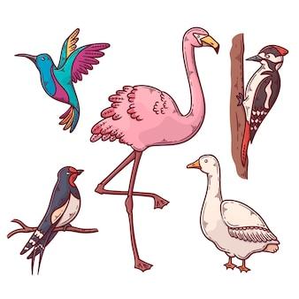 Conjunto de aves exóticas y domésticas.