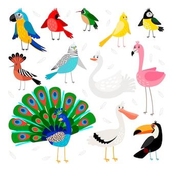 Conjunto de aves tropicales y exóticas.