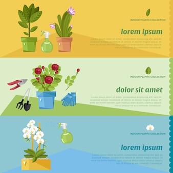 Conjunto de banner de plantas de casa hermosa