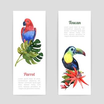 Conjunto de banners de acuarela de aves tropicales.