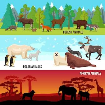 Conjunto de banners de animales planos