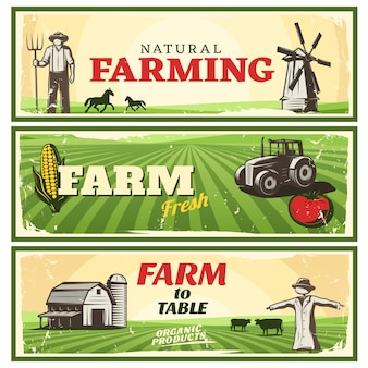 Conjunto de banners de concepto de granja a mesa