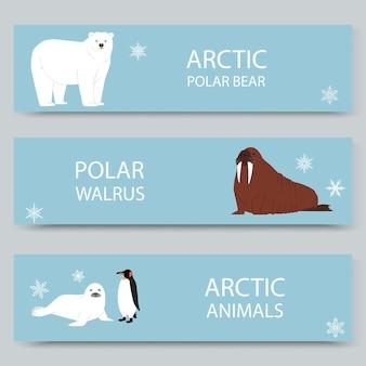 Conjunto de banners de dibujos animados de animales árticos y polo norte