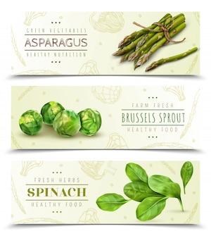 Conjunto de banners horizontales realistas de verduras de hoja fresca de granja