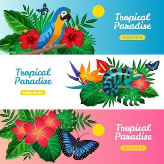 Conjunto de banners horizontales tropicales