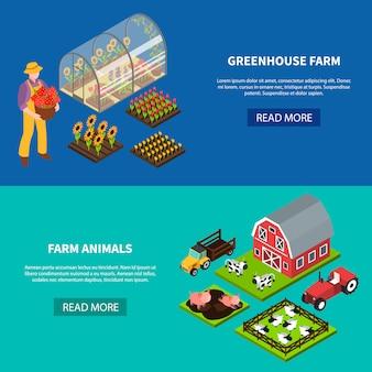 Conjunto de banners isométricos de granja