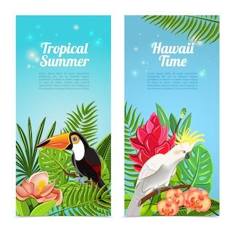 Conjunto de banners verticales de aves tropicales de la isla.