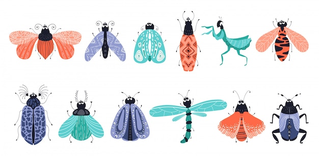 Conjunto de bichos o escarabajos de dibujos animados, mariposas