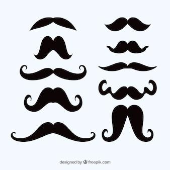 Conjunto de bigotes