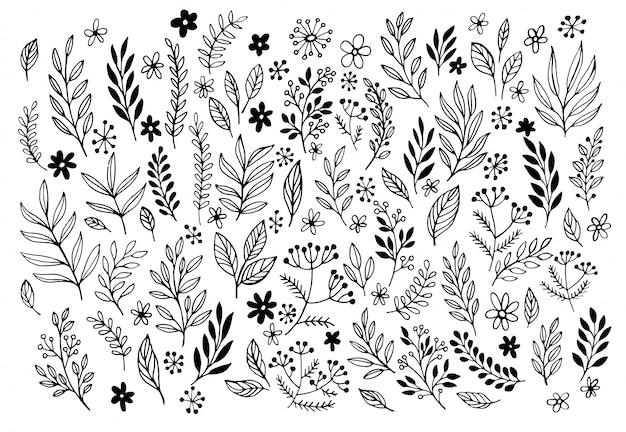 Conjunto de bocetos y garabatos de línea dibujado a mano elementos florales de diseño.