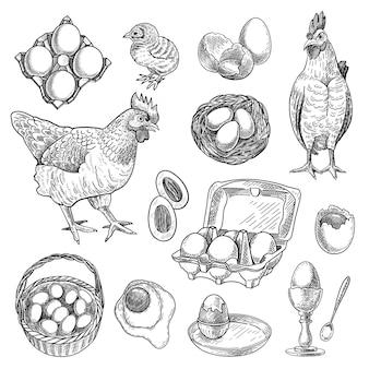 Conjunto de bocetos de productos de granja de pollos.
